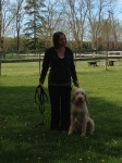 Dog training lessons at Quest Canine